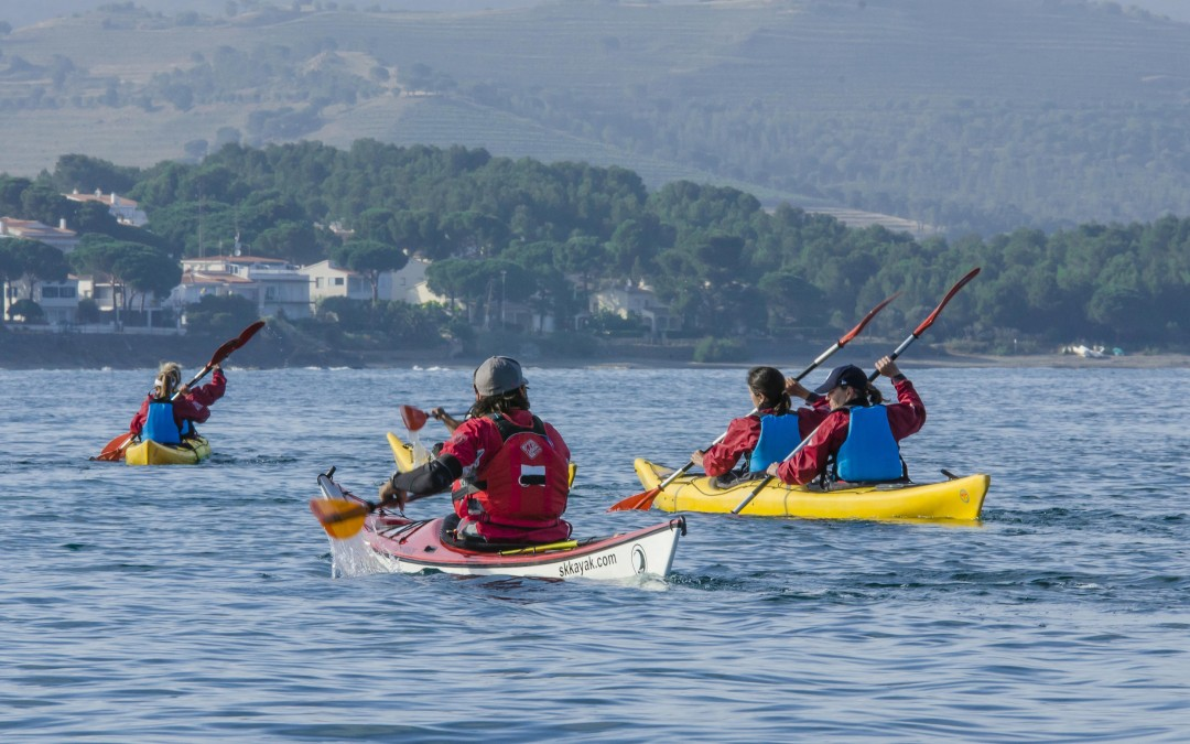 Costa Brava: Herbs and edible seaweed by kayak
